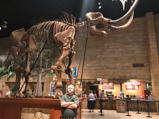 Ulasan Mengenai Creation Museum